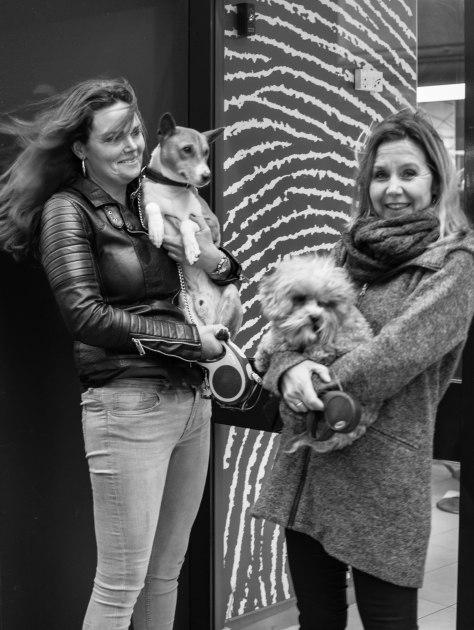 dames hondjes (1 van 1)