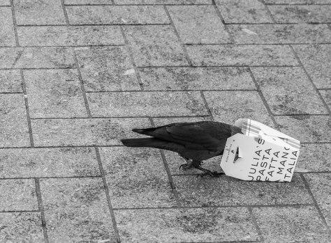Citybird bakje (1 van 1)