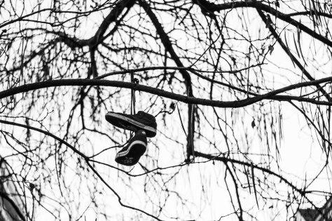 boomschoenen-1-van-1